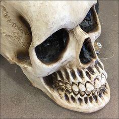 Giant Haunted Living Halloween Skull – Fixtures Close Up Halloween Skull, Skulls, Retail, Skeletons, Sleeve, Retail Merchandising