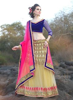 Imposing Net Beige and Blue Patch Border Work A Line Lehenga Choli