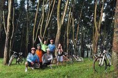 rubber forest aka alas karet