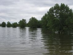 The Missouri river- can see it from my house in Niobrara, NE Spent many summers in this river! Thanks for the memories!