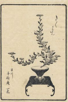 A History of Ikebana Japanese Floral Design, Japanese Flowers, Ikebana Arrangements, Modern Flower Arrangements, Japanese Drawings, Japanese Prints, Fantasy Illustration, Botanical Illustration, Japanese Watercolor