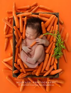 Baby Carrots.  #Newborn #Carrots #MoffattPhotography