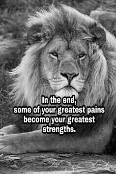 Lion of Judah, quote, in the end some of your greatest pains become your greatest strengths. Amen.