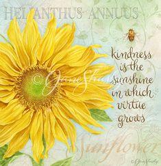 http://janeshasky.com/wp-content/gallery/botanical-inspirations/js-d225-botanicalsunflower.jpg