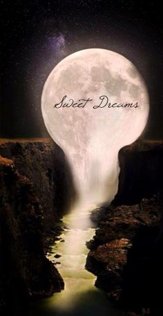Sweet dreams. My e-mail won't let me send. Tell you about that later. Love you. Kiss Pop and Molly for me.