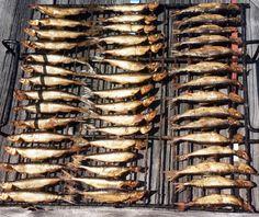 Pellon+Miekojärvellä+kalastettuja+ja+rannassa+savustettuja+muikkuja