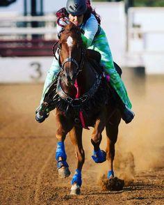 Instagram Barrel Racing Horses, Barrel Horse, Rodeo Outfits, Equestrian Outfits, Beautiful Horse Pictures, Beautiful Horses, Horse Saddles, Western Saddles, Woman Riding Horse