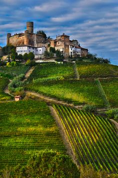 Langhe, Italy. More and a map of this area at http://www.miomyitaly.com/piedmont.html