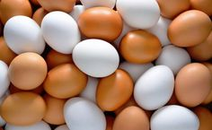 Egg Diet for Weight Loss - See how to lose weight with boiled eggs diet plan in breakfast, lunch and dinner. Get Healthy, Healthy Hair, Healthy Recipes, Egg Recipes, Healthy Foods, Healthy Options, Boiled Egg Diet, Boiled Eggs, Hard Boiled
