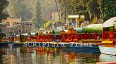 #Xochimilco #México - Muestra portafolio #México lindo y querido