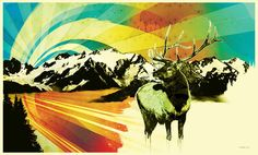 Northern Lights Poster (Lithograph)