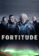 Image result for fortitude tv series