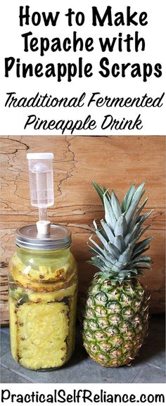 "How to Make Tepache with Pineapple Scraps Tepache, or ""tepache de piña,"" is a traditional South American Pineapple drink, made by fermenting leftover pineapple peels with a bit of sugar and spices. It's naturally probiotic and super tasty. Canning Pineapple, Pineapple Beer, Pineapple Drinks, Pineapple Recipes, Nutrition Education, Diet And Nutrition, Nutrition Guide, Gourmet, Canning Recipes"