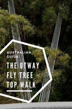 The Otway Fly Tree Top Walk