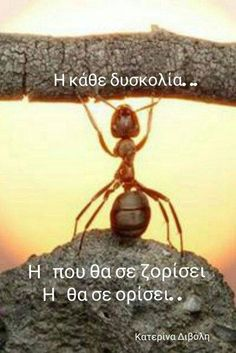 Unique Quotes, Smart Quotes, Best Quotes, Inspirational Quotes, Wisdom Quotes, Life Quotes, Images And Words, Greek Words, Greek Quotes