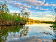 Phoenix Lake At Golden Hour Photo Hosting, Golden Hour, Phoenix, Planets, This Is Us, River, Landscape, Photography, Outdoor