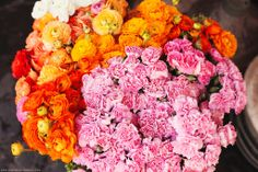 More pink and orange blooms. Must try this combo.