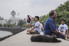 another reputable authority:  Harvard #Yoga Scientists Find Proof of #Meditation Benefit