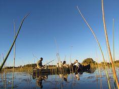 Mokoro trip, Okavango Delta, Botswana, Safari