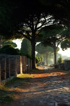 Old roman ways, Ostia Antica, Italy (by Olga). This road has been in use for over 2,000 years!