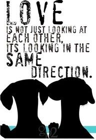 Love is not just looking at each other, it's looking in the same direction.