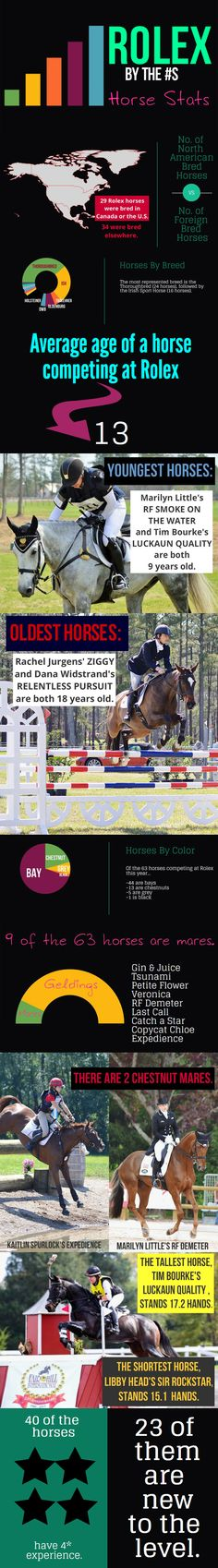 Rolex By The Numbers: Horse Stats - Eventing Nation - Three-Day Eventing News, Results, Videos, and Commentary Inspirational Horse Quotes, Horse Information, Young Old, Do Everything, Horse Stuff, Dressage, Equestrian, Random Things, Rolex