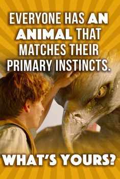 Everyone Has An Animal That Matches Their Primary Instincts