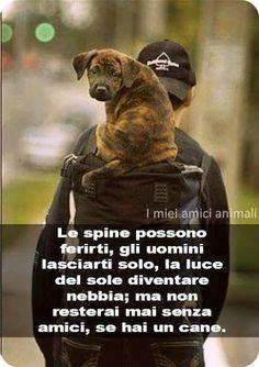 Cesidio Spacone - Google+