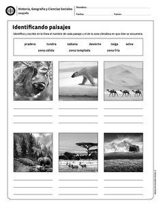 Identificando paisajes