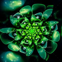 Fractal Flower by CJ_Romas Macro closeup of fractal flower, digital artwork for creative graphic design