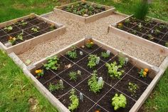 what a neat way to make a boxed garden!