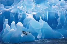 Iceberg azzurro #Isole Sandwich #Antartide
