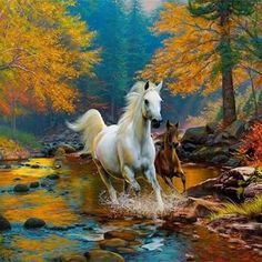 28 Mind-Blowing Reasons Why Picture Of Beautiful Scenery Is Pretty Horses, Beautiful Horses, Animals Beautiful, Horse Drawings, White Horses, Equine Art, Horse Pictures, Wildlife Art, Western Art
