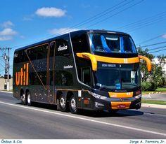 Pasta 4069 - Util - Onibus & Cia - desde 2003 - Fotopages.com
