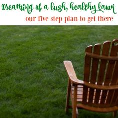 Dreaming of a lush healthy lawn and our five step plan to get there