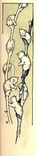 yajifun:canadiansliveinigloos:   Margaret Ely Webb  pussywillows = ネコヤナギ?