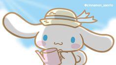 おはよう、シナモンだよ♪そろそろ「おぼん休み」のお友達もいるのかな?すてきな夏の思い出たくさん作ってね!