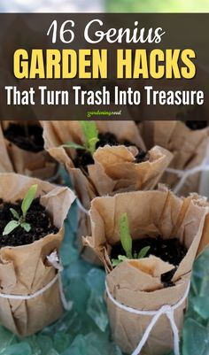 Take a look at these 16 genius garden hacks and turn your trash into treasure! #gardenhacks Wine Bottle Planter, Broken Egg, Mini Fairy Garden, Rain Barrel, Gardening Hacks, Grandparent, Terracotta Pots, Milk Jug, Food For Thought