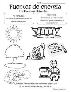 Picture Science For Kids, Science And Nature, Teaching Science, Teaching Resources, Environmental Science, Science Projects, Interactive Notebooks, Ecology, Social Studies