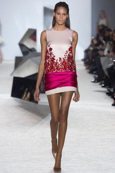 Giambattista Valli Spring 2014 Couture Fashion Show - Cindy Bruna (Elite)