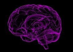 Talk Therapy Helps Strengthen Brain Connections