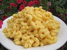 The BEST macaroni and cheese recipe I've found and it's so easy!! If you have time and don't want to prepare it in the microwave you can always stick it in the oven for about 20 minutes at 400 degrees.