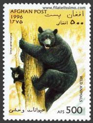 Oso negro (Ursus americanus). Afghan post stamp 1996
