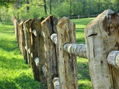 Very cool, rustic fence