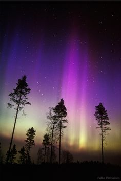 FINLAND! See and sleep under the amazing Northen lights in Finland! #Finland #Northenlights