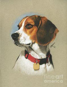 Beagle Painting by Marshall Robinson. #dog #canine #art