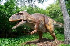 Dinosaurs of Kansas  04/06/2013 - 05/05/2013   Mid-America Air Museum  2000 W. Second  Liberal, KS 67901  620-624-5263  Ten lifelike, life-sized animatronic dinosaurs will be on exhibit. The museum will be open 8 a.m.-8 p.m. Monday-Friday and 9 a.m. to 8 p.m. Saturday and Sunday    Admission is $10 per adult and $6 for students 3-12