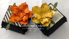 Carolina Evans - Stampin' Up! Demonstrator, Melbourne Australia: Flower Frenzy and Hamburger Gift Box
