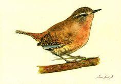 Oiseau jardin PRINT-Wren oiseau chanteur par SanMartinArtsCrafts