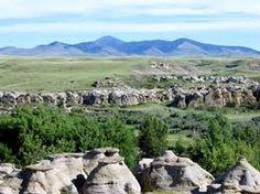 Sweet Grass Hills Grass, Mountains, Places, Sweet, Nature, Travel, Candy, Naturaleza, Viajes